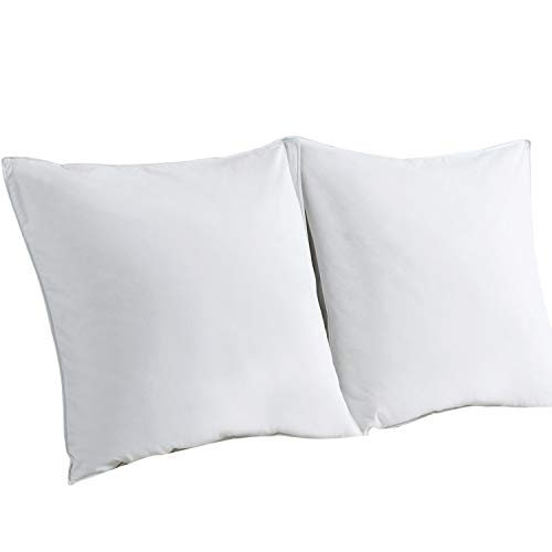 Downcy Premium Natural White Feather and Down Pillows, Medium Support, 80X80cm Set of 2