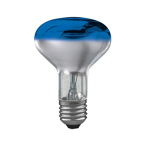Paulmann 250.64 Beleuchtung Reflektor Glühbirne R80 60W E27 blau 25064 Leuchtmittel