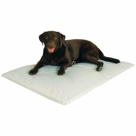 Dog Pad Bulk Uk