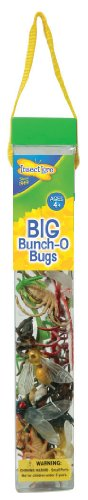 Insect Lore - 48131 - Insecte - Big Bunch O' Bugs
