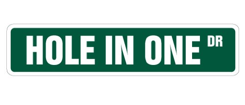 """HOLE IN ONE Street Sign golfer golf clubs balls lover 