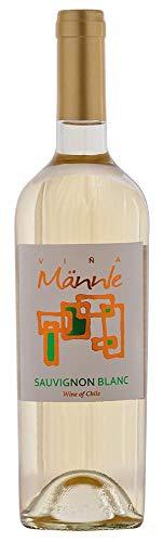 Sauvignon Blanc Varietal 2017