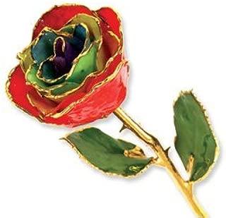 Allmygold Jewelers Long Stem Dipped 24K Gold Trim Gypsy Rainbow Rose