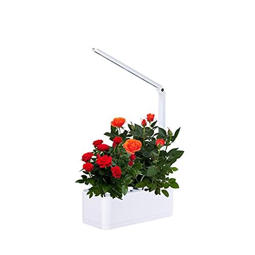 Sistema de Cultivo hidropónico LED Grow Light Indoor Herb Garden Starter Kit Kits de germinación de Plantas 2 macetas para Tomates de Marihuana Vegetales de Cannabis, Cerca de la Naturaleza