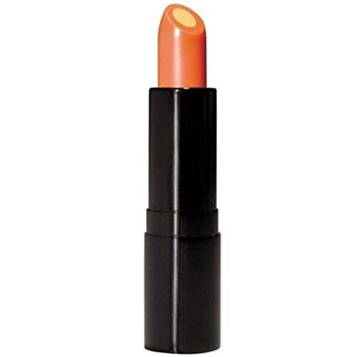 Vitamin C Lip Treatment SPF 15 - Lip Balm Wrapped Around a Conditioning Core of Vitamin E That Smoothes, Soothes and Helps Prevent Dryness and Chapping