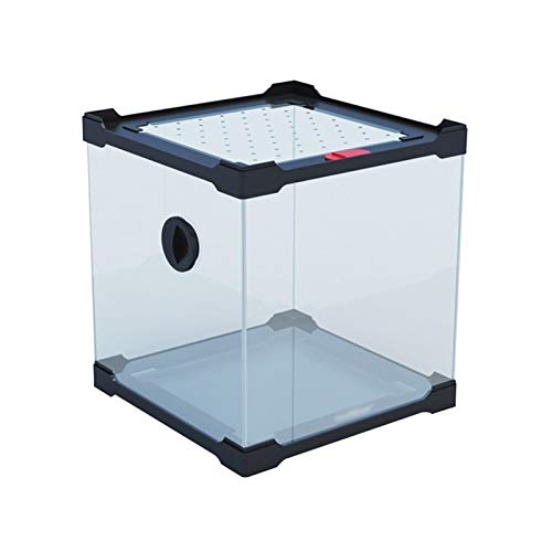 Stapelbare Höhe Reptilienbox, Acrylglas Eidechse Insekt Gecko Python Vivarium Terrarium Pet Shop (Size : 20 * 20 * 20CM)