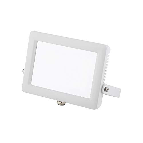Wiva Lighting Utilities–Proiettore LED SMD 50W 4000K Schermo Opal Bianco