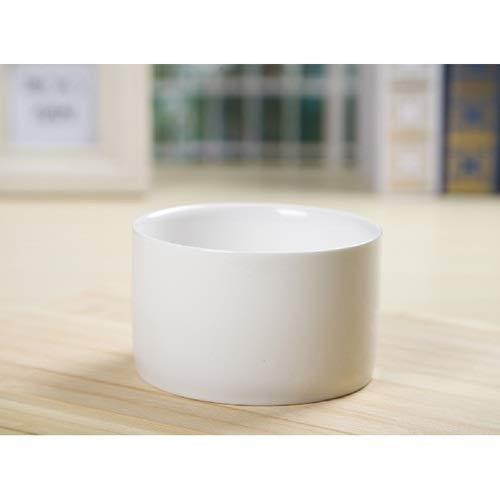 Faturt Simple Blanc Creative Mini Pot de Fleurs, céramique Droites Plantes en Pot, Plantes Grasses et Cacti sont cultivés dans des Pots, Meubles Décoration Paysage Micro,