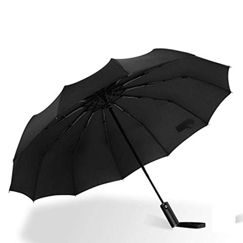 GPWDSN winddichter, doppelt belüfteter Regenschirm für Frauen, weibliche männliche 12-Knochen-Regenschirme für große Unternehmen, Männer, Frauen, Geschenk-Sonnenschirm