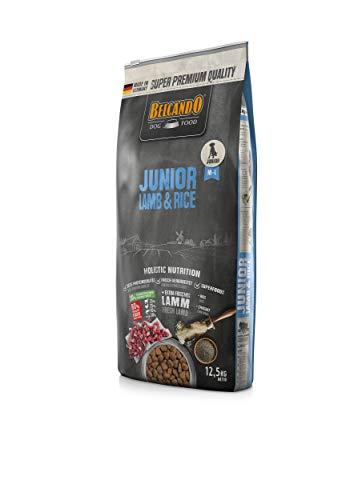 Belcando Junior Lamb & Rice Hundefutter | Trockenfutter für empfindliche Junghunde | Alleinfuttermittel für Junghunde ab 4 Monaten (12,5 kg)