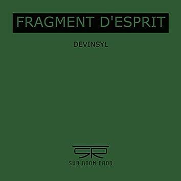 Fragment d'esprit (feat. DeVinsyl)