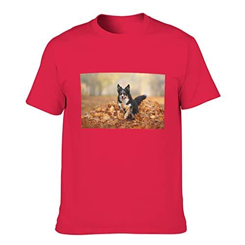 Camiseta de algodón para hombre de Corgi, amantes de las mascotas, estilo vintage Red1 XXXXL