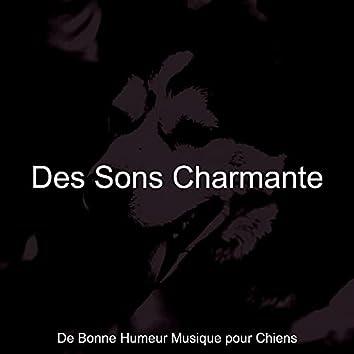 Des Sons Charmante