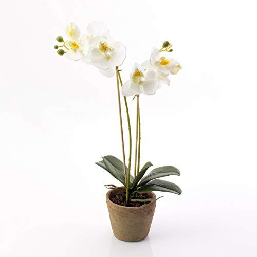artplants.de Künstliche Phalaenopsis Orchidee MINA im Topf, 2 Zweige, weiß, 45cm - Deko Kunstblume