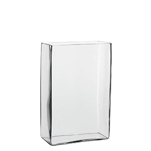 Hoge vaas/accubak transparant glas rechthoekig 20 x 10 x 30 cm Transparant