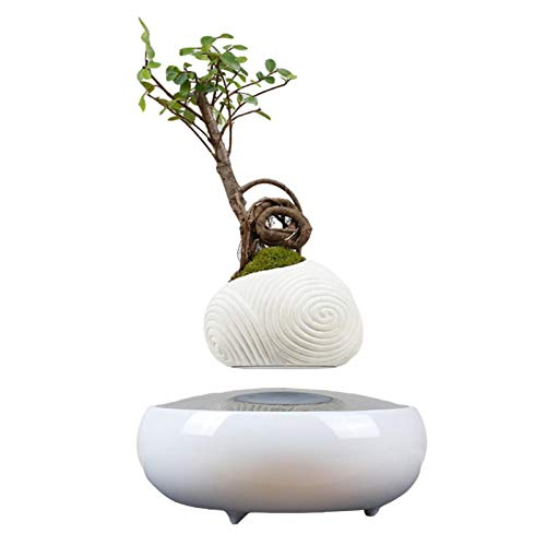 Levitating Air Bonsai Pot, Magnetic Floating Levitating Plant Pot Rotating Air Bonsai Planter Flower Pot Planter Potted Plant Home Desk Decor (Without Plants)