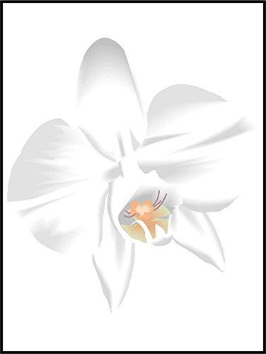 Fliesenaufkleber Fliesentattoos für Bad & Küche - für weiße Fliesen empfohlen - Küchenfliesen für einzelne Fließen 20x25 cm - MD436 - schöne Blume