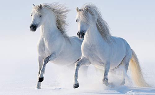 1000 stukjes puzzel Twee witte paarden, puzzelspel speelgoed vakantie geschenken 75x50cm
