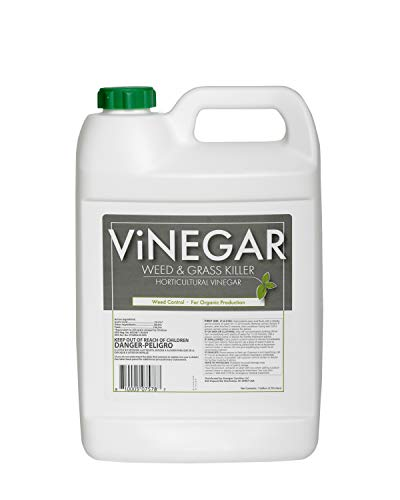 Vinegar Weed & Grass Killer Approved for Organic Production Pet Safe review