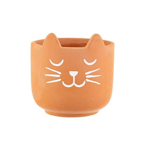 Sass & Belle Mini-Katzen-Whisker-Übertopf, Terrakotta