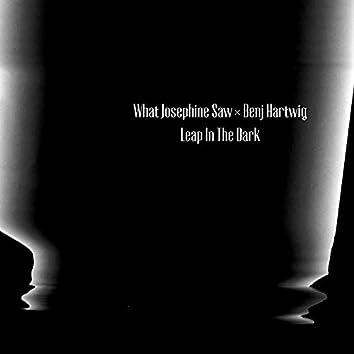 Leap in the Dark (Benj Hartwig Remix)