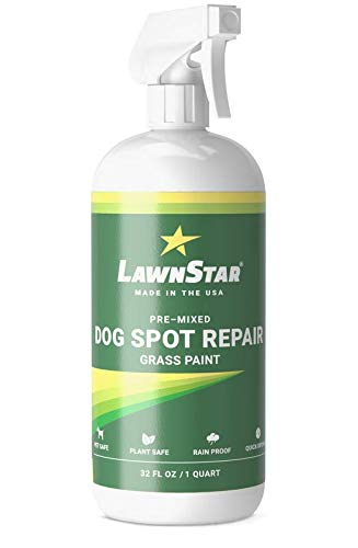 Dog Spot Repair Grass Paint, Pre-Mixed & Ready to Spray - Covers Brown Burn Patches on Lawn (32 fl oz)