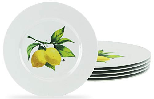 Fresh Lemons  6pc Melamine Salad Plate Set