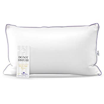 The Original Queen Anne Pillow - Famous 100% European White Goose and Duck Down Blend - Cruelty Free Luxury Hotel Pillows - Made in USA  King Firm