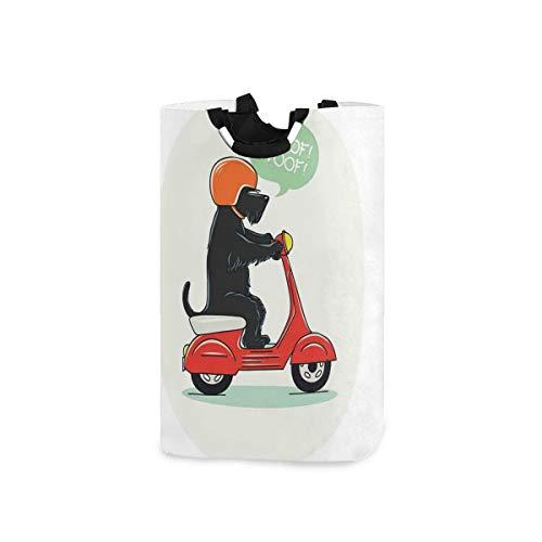 COFEIYISI Wäschesammler Wäschekorb Faltbarer Aufbewahrungskorb,Illustration des Welpenreit-Rollers mit Schuss-Text-Ballon-Comic-Design,Wäschesack - Wäschekörbe - Laundry Baskets