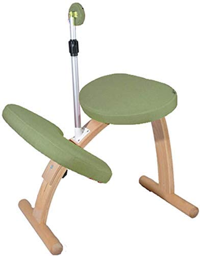 LEILEI Child Posture Correction Chair Ergonomic Kneeling Seat Office Correction Posture Sitting Can Be Raised and Lowered Creative children learning chair kneeling seat (Color :02)
