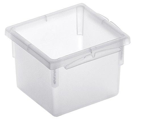 Rotho Basic Ordnungssystem, Kunststoff (PP), transparent, (8 x 8 x 5 cm)
