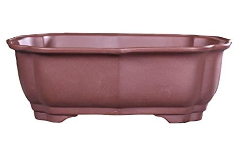 Tiesto Bonsai Rectangular con Agujeros de Drenaje   Hecho a Mano con Materiales de Calidad   Medidas 21 x 16 cm