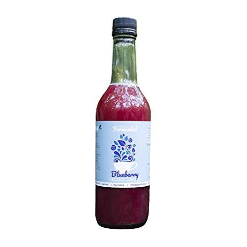Freshly Fermented – Organic & Vegan Certified Blueberry Jun Tea Drink, 6 x 500ml