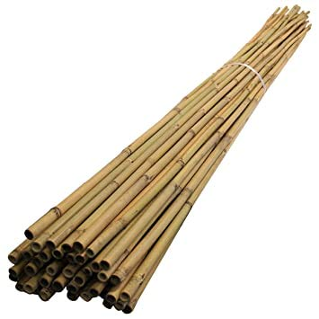 A2Z Home Solutions Durable Bamboo Cane Garden Stakes 4Ft (121cm) x 14mm Plant Stakes Sticks Sturdy Plant Support - 10 Pack