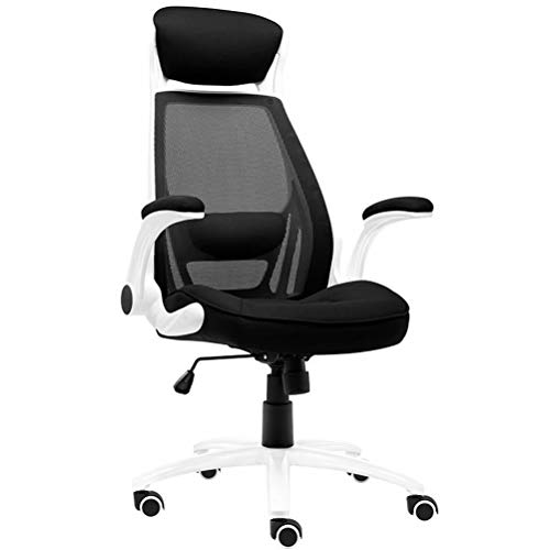 Gaming Chair Ergonomic Racing Heavy Duty Office Chair Video Game Chair, Massage Function Lumbar Support with Flip Up Arms & Nice Chic Desk Chair, Adjustable Best Home Office Chair - Black