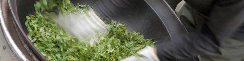 宮崎茶房『有機釜炒り茶(粉末)食べる緑茶』