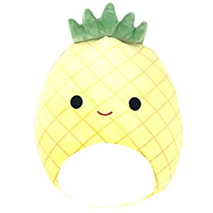 squishmallows juicy pineapple kids activities in northern nevada