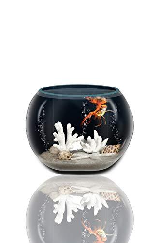 Pecera de Cristal Redonda 16 Cm de Diámetro, pecera esférica, Acuario Pequeño, Acuario para Peces, acuarios y peceras Completa
