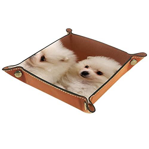 バレットトレイ、キャッチオールトレイデスクオーガナイザーハロウィンデコレーションテーブルコイン用キージュエリートレイクリーンアップ スピッツドッグの二人の子犬 家庭に適しています会社