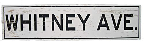 Tin Shop Signs   Your Very Own Tin Metal Street Sign   Personalized to Feature Your Name Followed by Lane, Avenue, Street, Way   White 6X24 inches