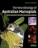 The Neurobiology of Australian Marsupials: Brain Evolution in the Other Mammalian Radiation