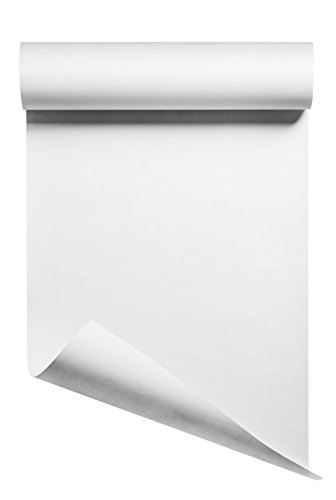 Heat Transfer Vinyl HTV/Iron-on 12 Inches by 10 Feet Roll (White)