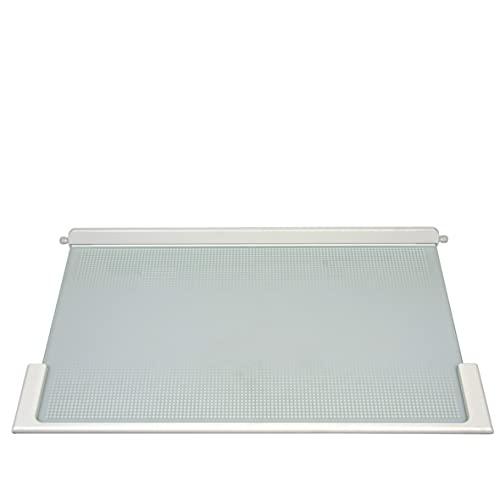 ORIGINAL Liebherr Glasplatte Abdeckplatte 495 x 300 Kühlschrank - 9293003