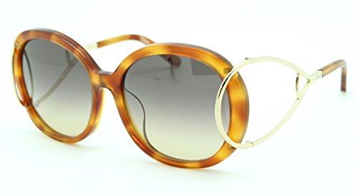 Chloé CE710SA, Acetate - Gafas de Sol Rubio Havana Unisex para Adulto, Multicolor, estándar