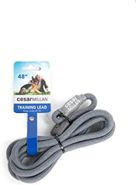 Cesar Millan Slip Lead Leash Dog Leash in Training Leash Small Medium Grey product image