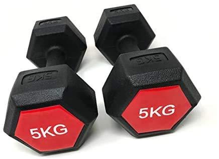 RG Sports Set of 2x5kg Portable Hand Dumbbells Hex Dumbbells Home Aerobic Fitness Training