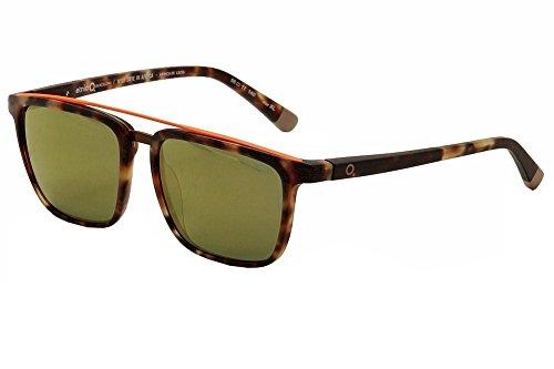 Etnia Barcelona Gafas de Sol WLA AFRICA05 HAVANA/GREEN hombre