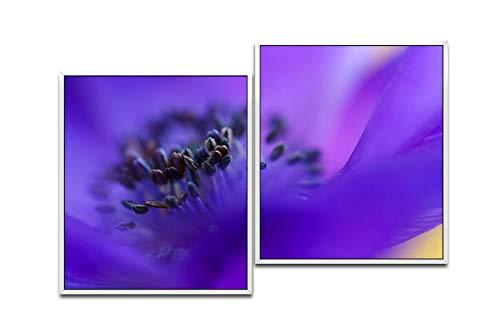 Paul Sinus Art Makro de 1 Fleur 130 x 90 cm (2 Photos env. WTD Toile décorative montée sur châssis pour Ombres Blanc 75 x 65 cm