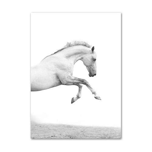 xwwnzdq witte Horse canvas schilderij poster en prints muur kunstdruk Nordic wandschilderijen voor woonkamer kunst wooncultuur 50x70 cm geen lijst