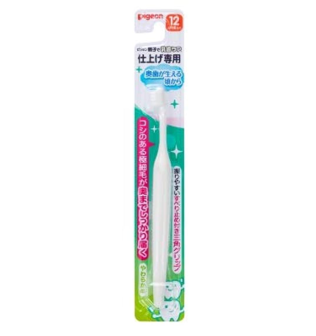オーバーコート悪意制約【まとめ買い】ピジョン 仕上げ専用歯ブラシ 奥歯が生える頃から ×12個